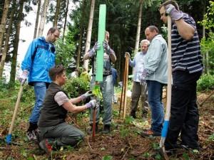 wildschutz-jungflanzen-1113-640x480