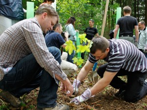 Teambuilding Waldprojekt