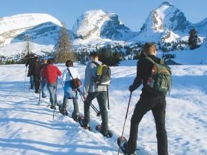 auf-schneeschuhen-natur-erkunden-winterevent-160-300x225