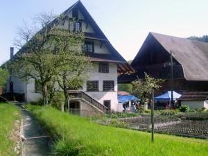 teamkochen-in-der-alten-muehle-808-300x225