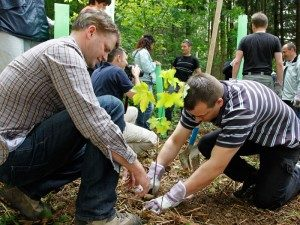 Teamevents im Wald