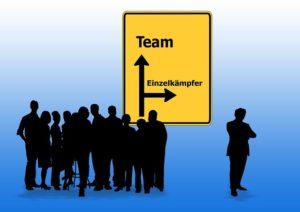 Team versus Experte